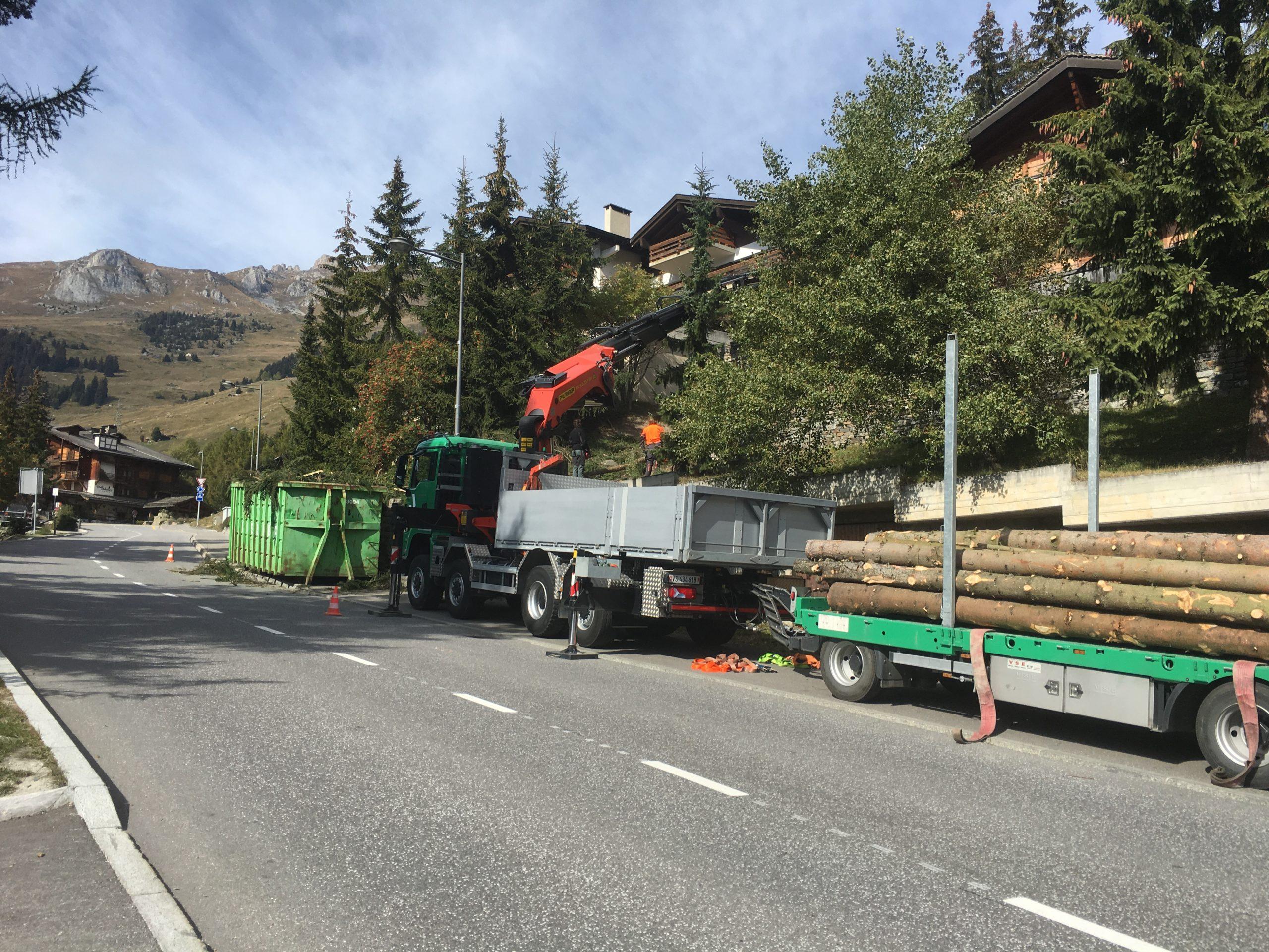 Abattage-arbre-verbier-bagnes